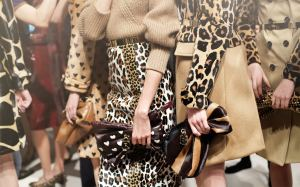 Animal Print, a fera do closet!